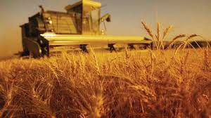 Сельскохозяйственные продукты,оборудование и технологии