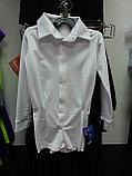 Брюки и рубашки для танцев, фото 4