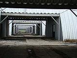 Строительство быстромонтируемых зданий, сооружений по технологии бескаркасного строительства, фото 5
