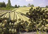 Установка деревянных опор ЛЭП, Строительство линий электропередач и связи на столбах ЛЭП высотой от 6,5 до 11, фото 3