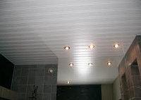 Реечный потолок AN85AC