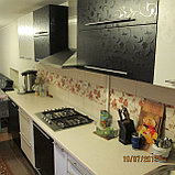 Кухня черно-белая с глянцевым теснением, фото 3