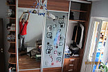 Шкаф-купе с матовыми стеклами, фото 2