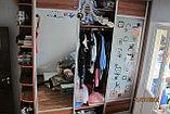 Шкаф-купе с матовыми стеклами, фото 5