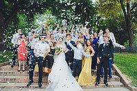 Свадебный фотограф. Профессиональный фотограф на свадьбу в Алматы