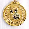 Медаль рельефная ВОЛЕЙБОЛ (золото)