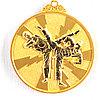 Медаль рельефная ТАЭКВОНДО (золото)