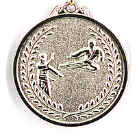Медаль КАРАТЕ (серебро), фото 1