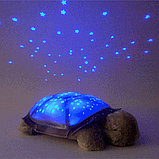 Черепаха проектор, ночник звездного неба, фото 3