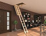Раскладная чердачная лестница 60х120х280 FAKRO LWS SMART тел./Whats Upp.8-707-5705151, фото 5
