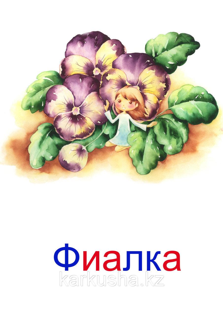 """Карточки Г. Домана """"Цветы"""""""