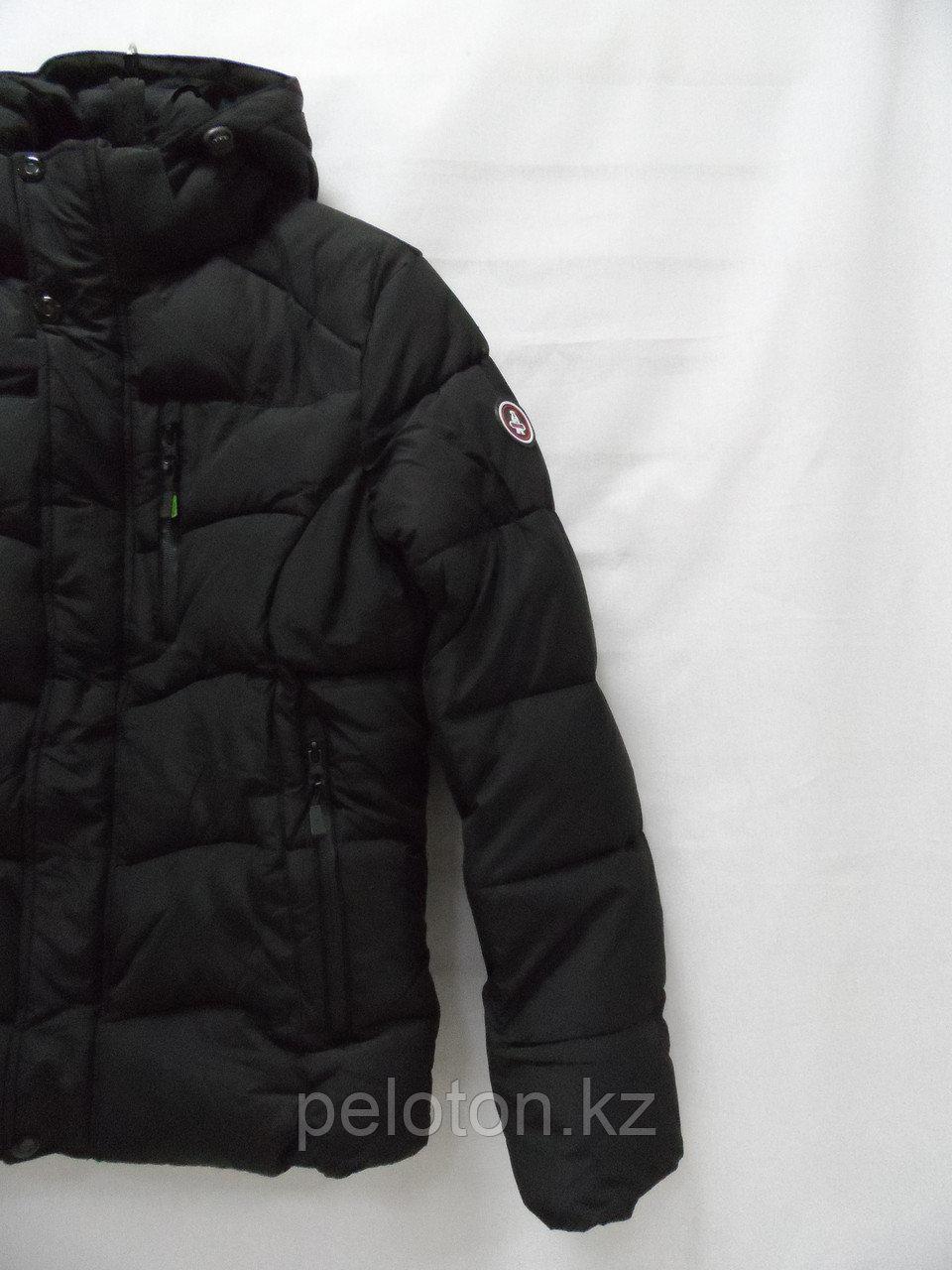 Пуховик. Куртка зимняя Polar Bear - фото 2