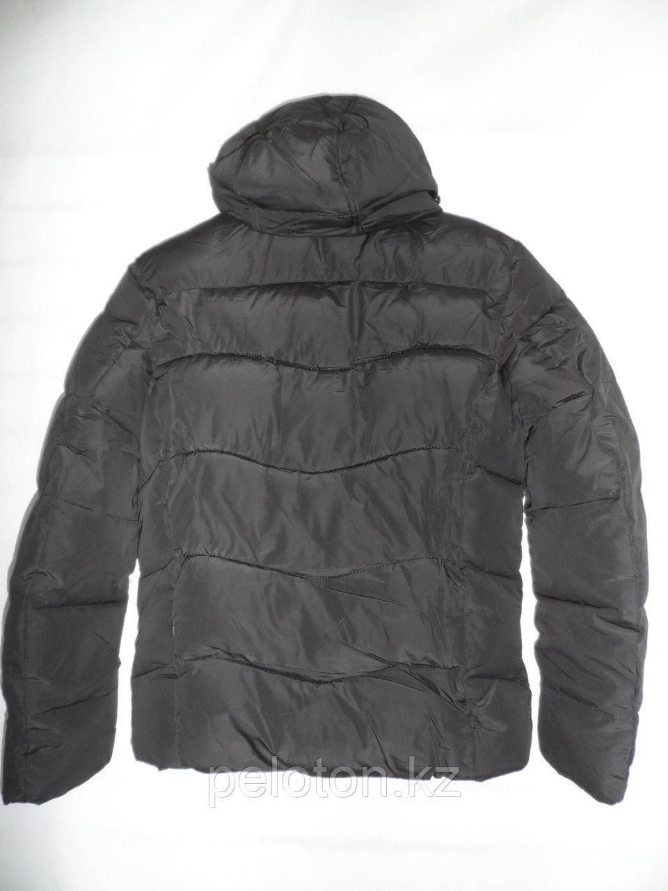Пуховик. Куртка зимняя Polar Bear - фото 3
