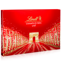 Шоколадные конфеты Champs elysses milk 445г.