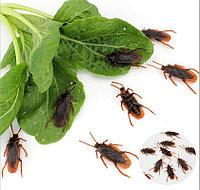 Пауки, тараканы искусственные для хеллоуина, фото 1