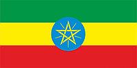 Флаг Эфиопии размер 1 х 2 метра.