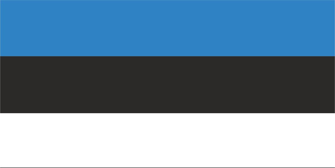 Флаг Эстонии размер 1 х 2 метра.