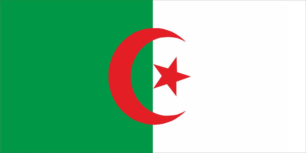 Флаг Алжира размер 1 х 2 метра.