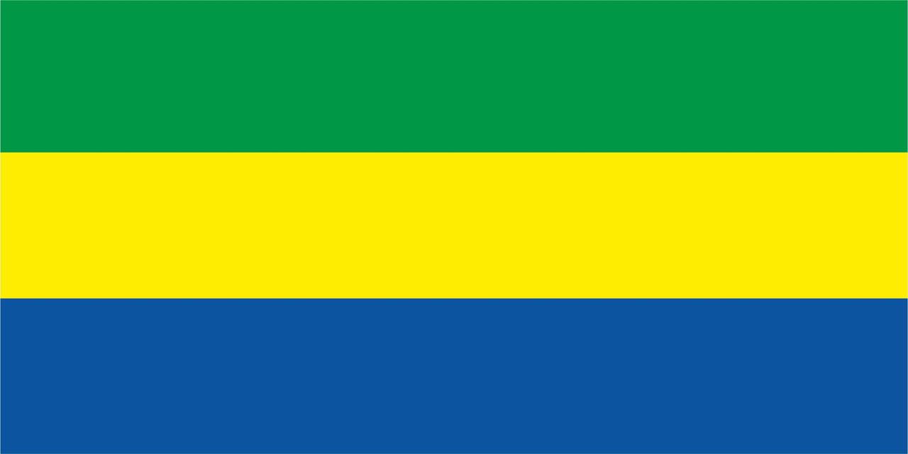 Флаг Габона размер 1 х 2 метра.