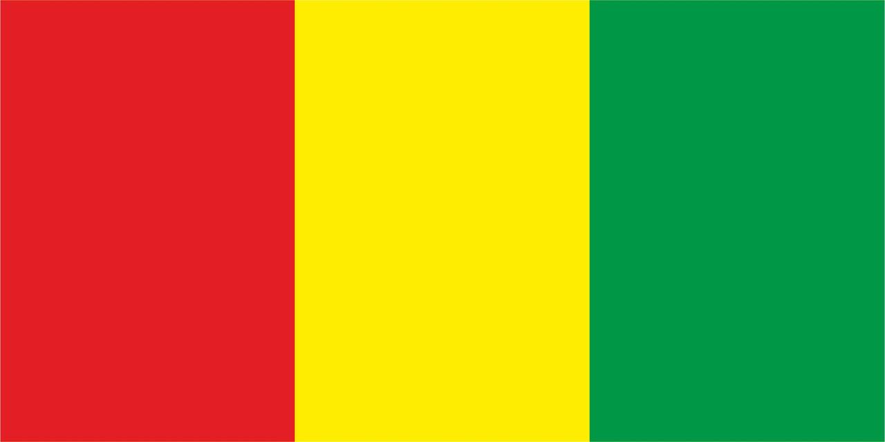 Флаг Гвинеи размер 1 х 2 метра.