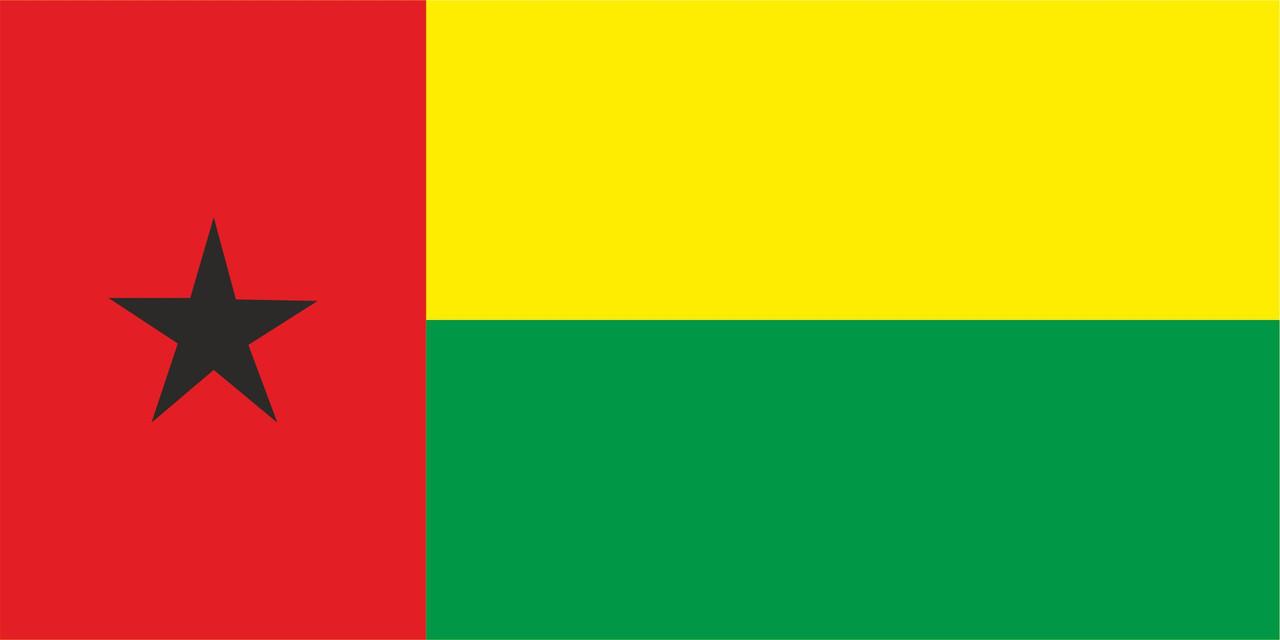 Флаг Гвинеи-Бисау размер 1 х 2 метра.