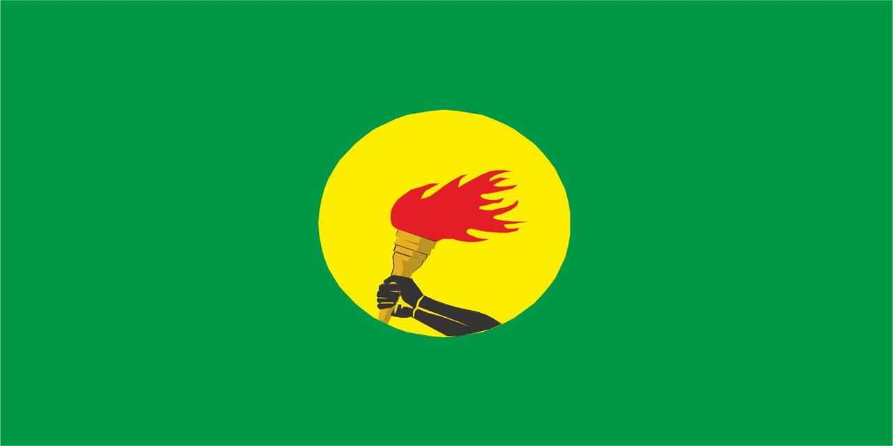 Флаг Заира размер 1 х 2 метра.