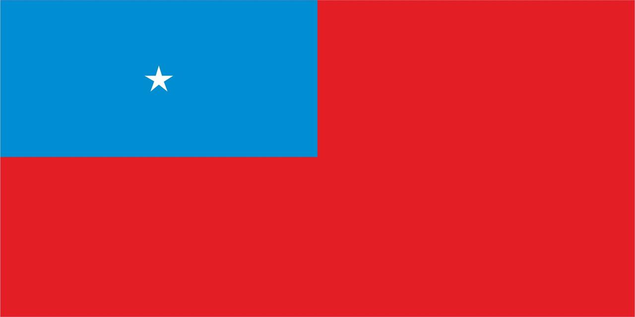 Флаг Западное Самоа размер 1 х 2 метра.
