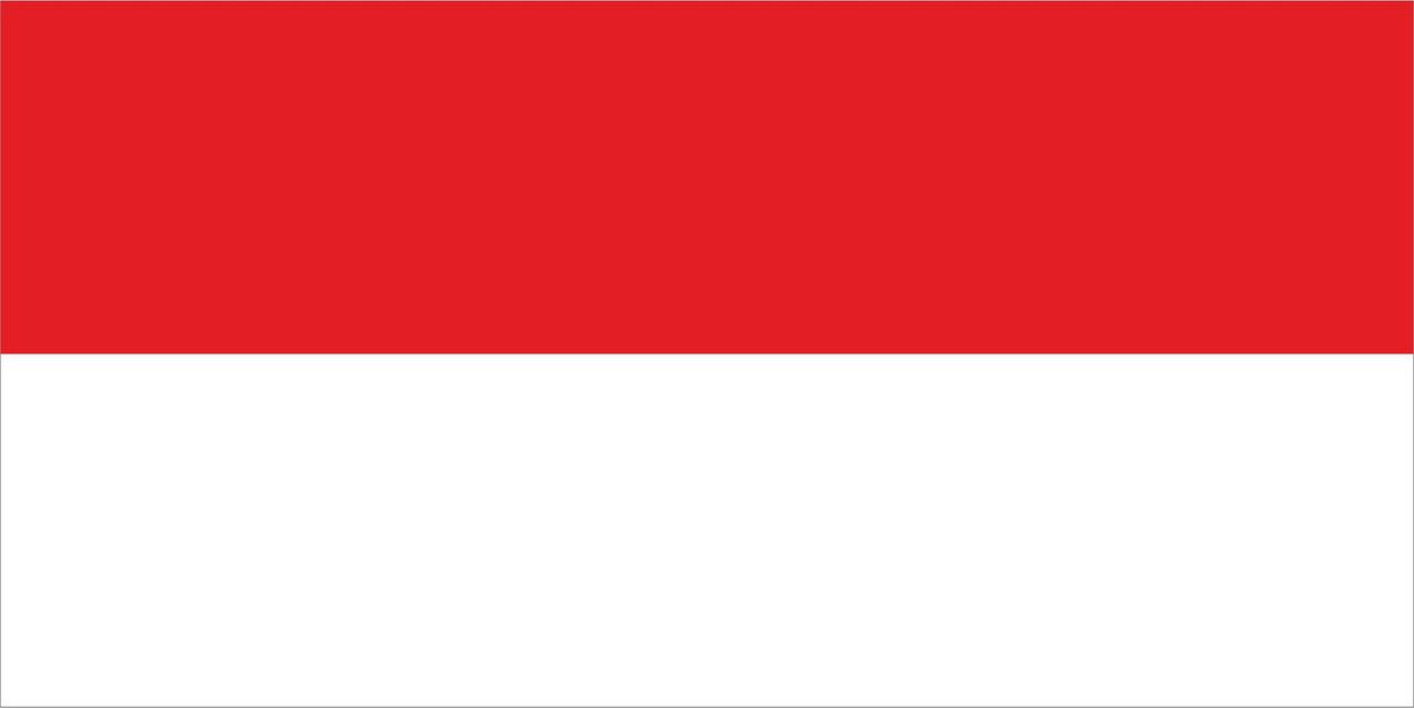 Флаг Индонезии размер 1 х 2 метра.
