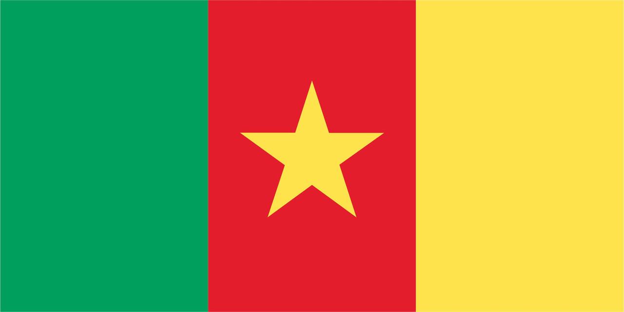 Флаг Камеруна размер 1 х 2 метра.