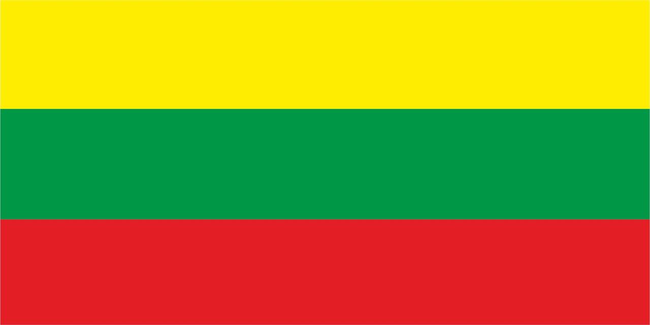 Флаг Литвы размер 1 х 2 метра.