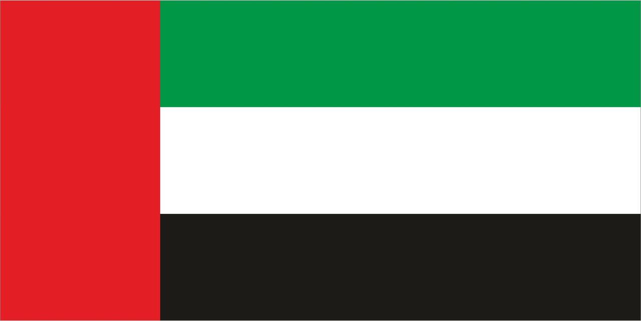 Флаг Объединенных Арабских Эмиратов ОАЭ 1 х 2 метра.