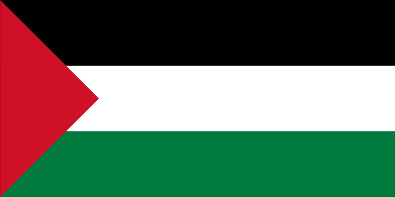 Флаг Палестины 1 х 2 метра.