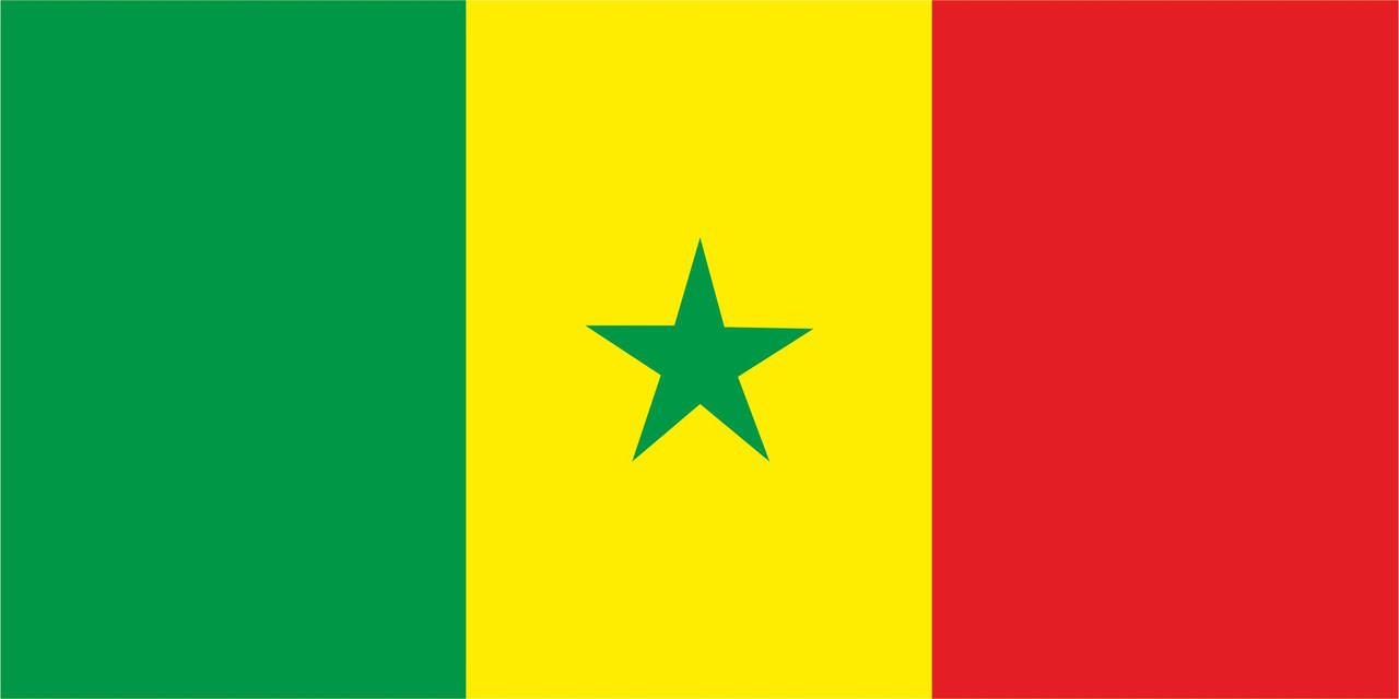 Флаг Сенегала 1 х 2 метра.
