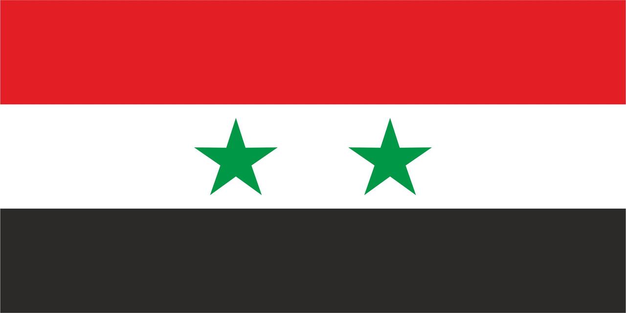 Флаг Сирии 1 х 2 метра.