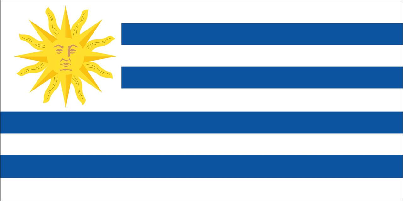 Флаг Уругвая 1 х 2 метра.