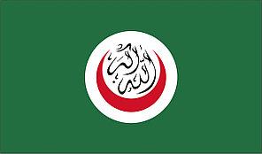 Флаг ОИК. Организация Исламского сотрудничества.