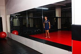 Зеркало для спортивного зала (15 октября 2015) 3