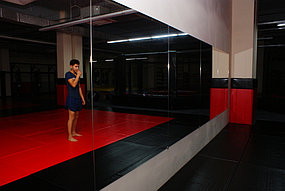 Зеркало для спортивного зала (15 октября 2015) 4