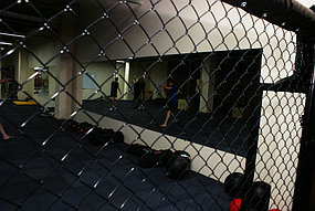 Зеркало для спортивного зала (15 октября 2015) 5
