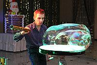 Шоу гигантских мыльных пузырей в Павлодаре, фото 1
