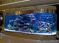 Мебель для аквариумов/аквариумы
