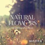 Питательная маска для восстановления волос Selective Professional Natural Flowers Nutri Mask 1000 мл., фото 2