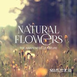 Нежный увлажняющий шампунь Selective Natural Flowers Hydro Shampoo 1000 мл., фото 2