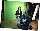 Виртуальный промоутер, фото 2
