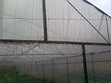 Пленка тепличная (ширина 12м), фото 2