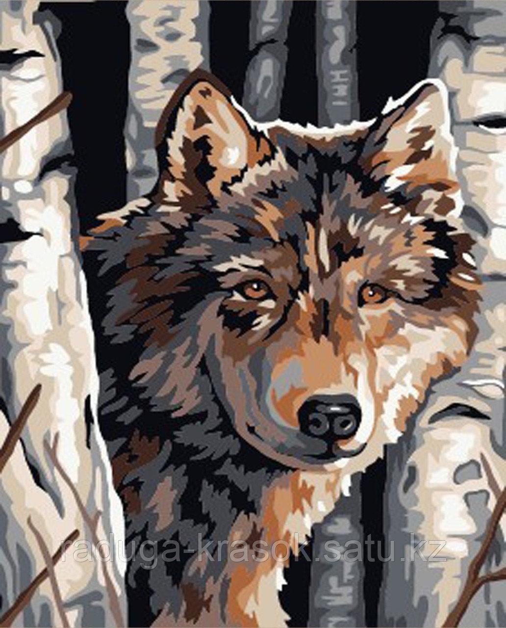 """Картины стразами на подрамнике """"Волк"""" 40*50"""