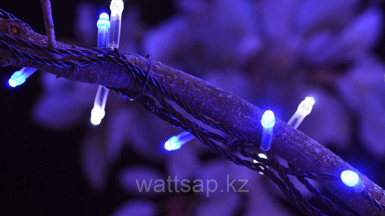Светодиодная гирлянда LED-KS-60-10M-B-220V синий