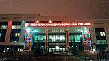 Новогоднее оформление зданий Астана, фото 4