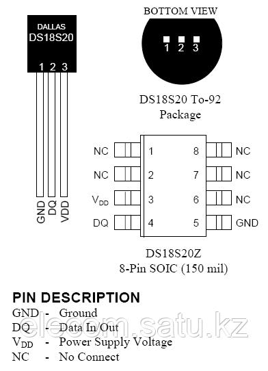 DS18S20