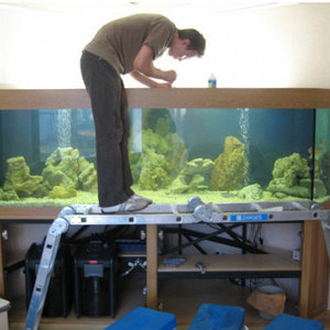 изготовление и обслуживание аквариумов